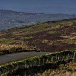 Il rally europeo festeggia la Pasqua in Irlanda con il Circuit of Ireland Rally.
